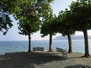Insel Mainau Bodensee